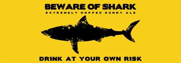 shark-widawa