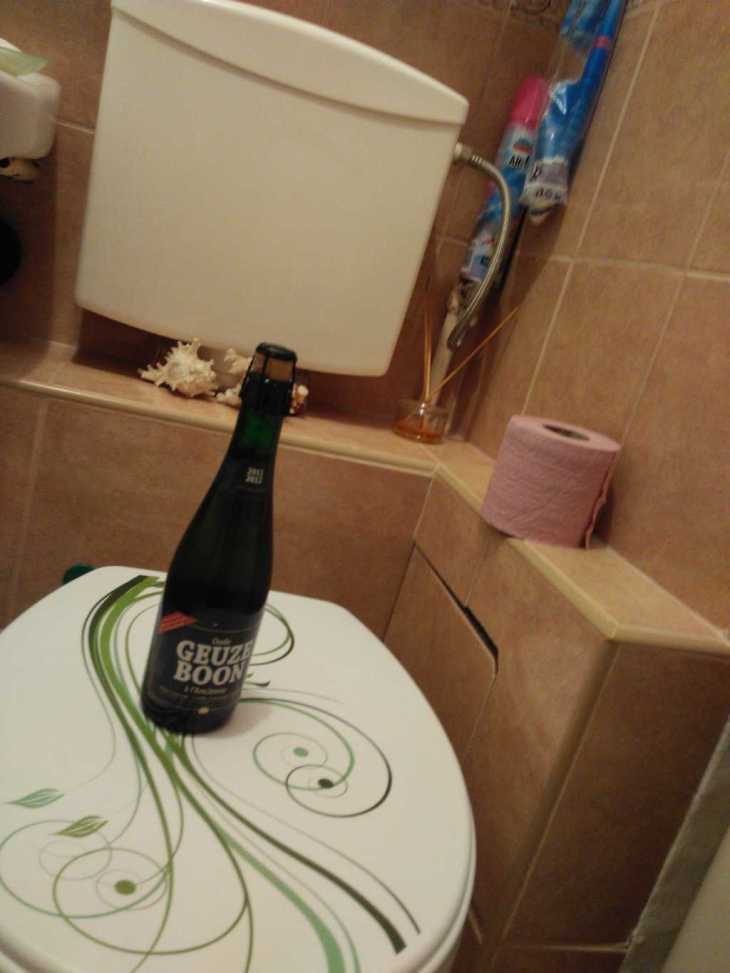 gueze-boon-in-toilet
