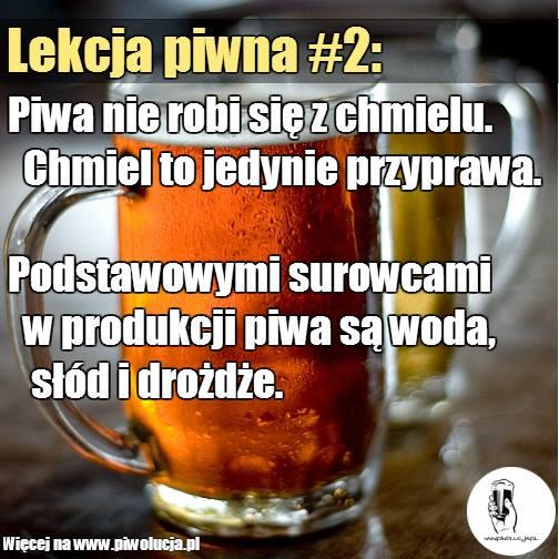 lekcja-piwna-2-chmiel