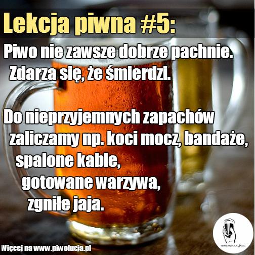 lekcja-piwna-6-wady