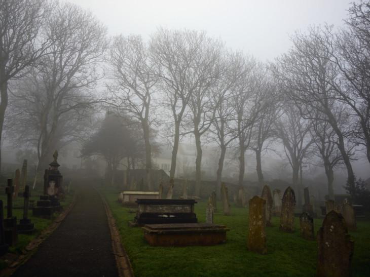 zapach-cmentarza-w-piwie-wada-anizol