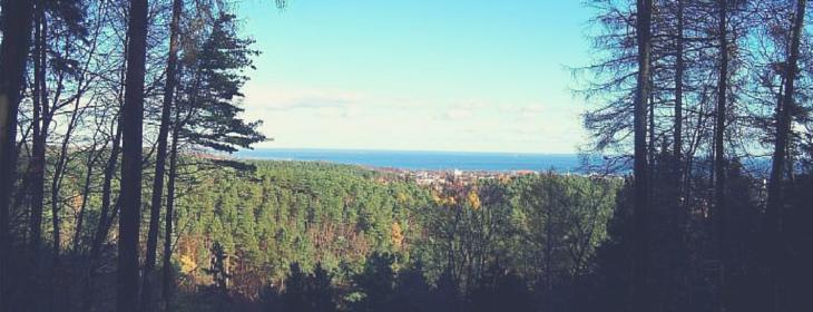 Punkt widokowy na Zajęczym Wzgórzu