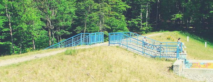 Krykulec (Rezerwat Kacze Łęgi)
