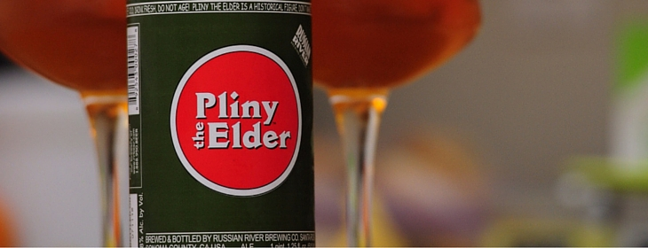 pliny-the-elder
