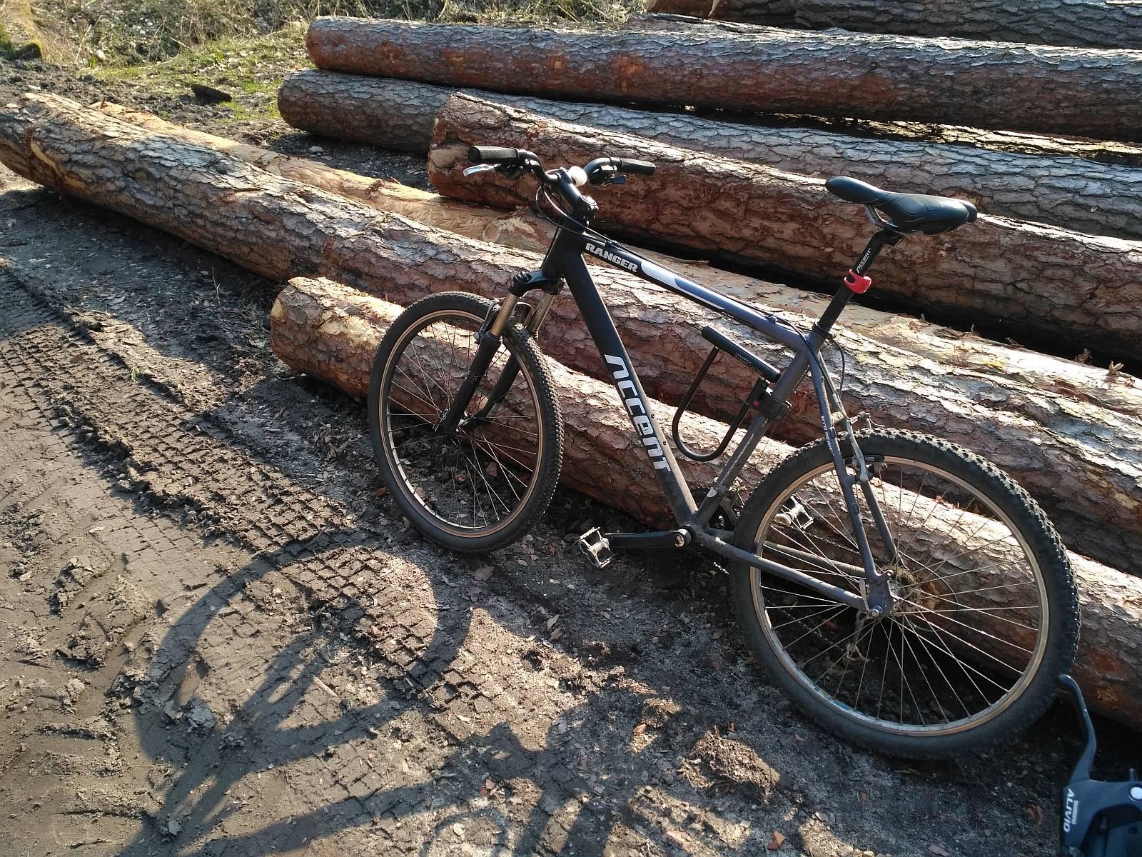 rower-accent-lasy-oliwskie