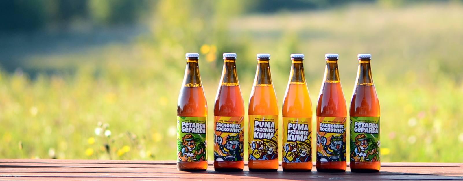 Browar Dziki Kocur - portfolio piw